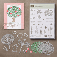 VIDEO: Thoughtful Branches No-Glue Treat Box
